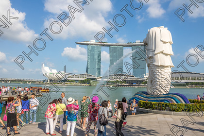 Singapore-ABD525498- 