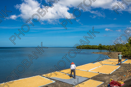 Philippines-ABD-525451 