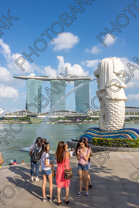 Singapore-ABD525501- 