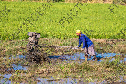 Philippines-ABD-525413 