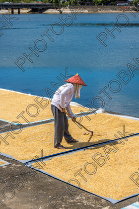 Philippines-ABD-525460 